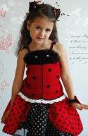 ladybug_details2