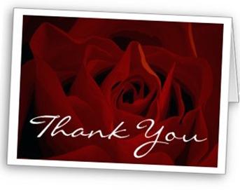 deep_red_rose_thank_you_card-p1376264071476949917gqe_325