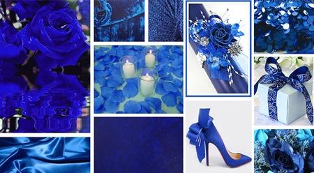 Royal Blue copy
